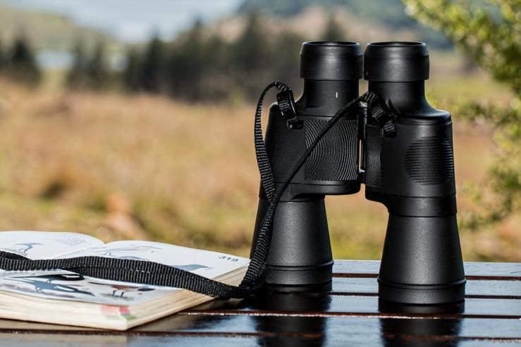 binoculars-995779_960_720